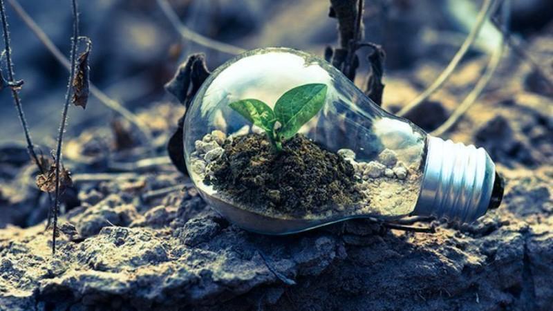 Encuesta mundial sobre el ambiente
